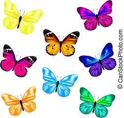 sommerfugl, sæt, ikon