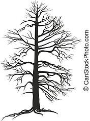 sort, træ, branchy, røder