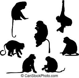 spøgefulde, silhuetter, abe