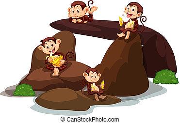 sten, glade, nydelse, banan, aber