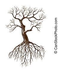 stor, leafless, træ