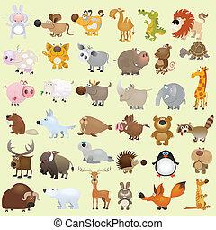 stor, sæt, cartoon, dyr