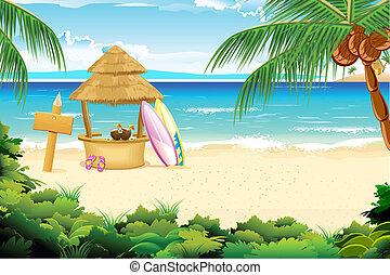 strand, i ligevægt