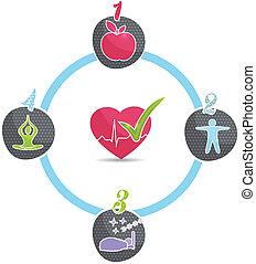 sunde, hjul, lifestyle
