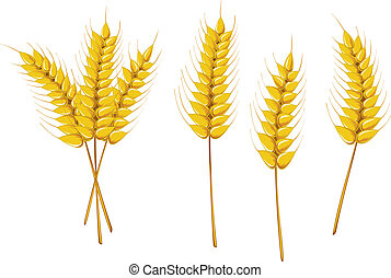 symboler, landbrug