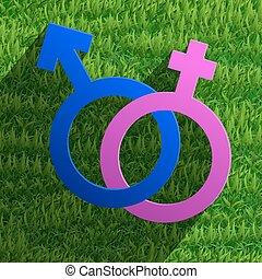 symboler, vektor, mandlig, kvindelig, ikon