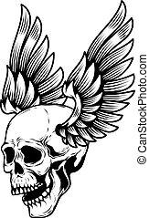 tegn., white., illustration, etikette, element, vektor, konstruktion, kranium, bevinget, emblem, logo, isoleret, menneske