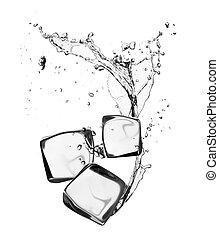 terninger, isoleret, is vand, plaske, baggrund, hvid