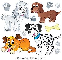 topic, image, hund, 3