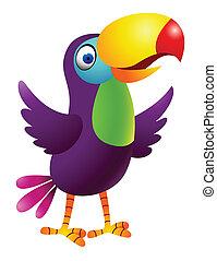 toucan, fugl, cartoon