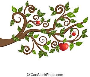træ, æble, branch