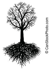 træ, vektor, rod