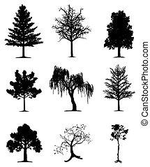 træer, samling