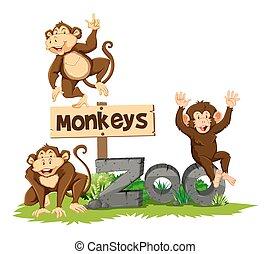 tre, aber, zoo
