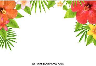 tropical blomster, grænse
