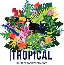 tropisk, eksotiske, planter, komposition, farverig