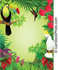 tropisk, jungle, fugl