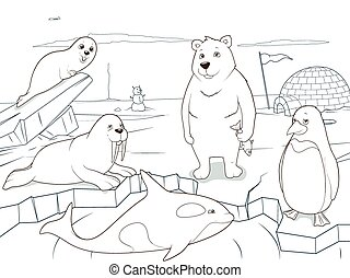 uddannelses, coloring, dyr, arktisk, boldspil, bog