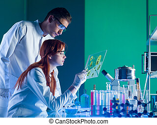 udsnit, farmaceutisk, videnskabsmænd, indstudering