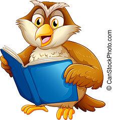 ugle, læsning