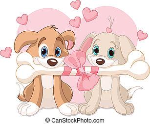 valentine, to, hunde