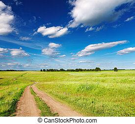 vej, landskab, land