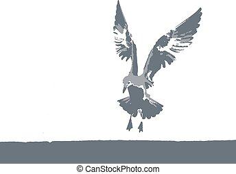 vektor, seagull, natur, illustration