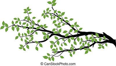 vektor, træ, silhuet, branch, grafik