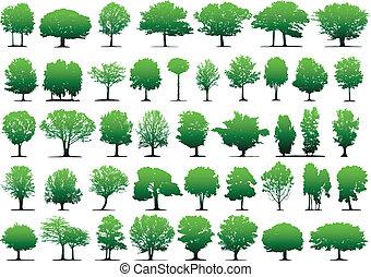 vektor, træer