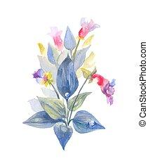 vild blomstrer, efter, leaves., regn, isoleret, vand, baggrund., busk, blomstrede, hvid, nedgange, komposition, hand-drawn
