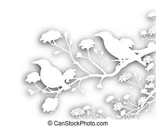 vild, cutout, fugle