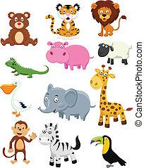 vild, sæt, samling, cartoon, dyr