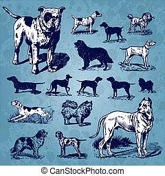 vinhøst, sæt, hunde, (vector)