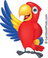 vink, cute, macaw, fugl