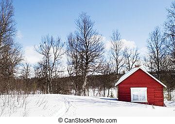 vinter, kabine