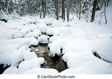 vinter, under, sne, flod, skov