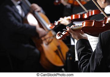 violinister, music., koncert, klassisk