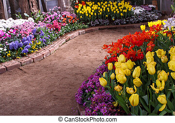 vokse, exquisite., oppe, parker, tulipaner