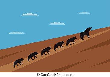 wolfes, begreb, ledelse, pakke