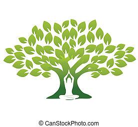 yoga, træ